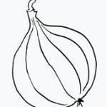 raetselkarte-zwiebel